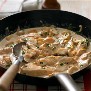 Chicken with mushroom cream sauce recipes